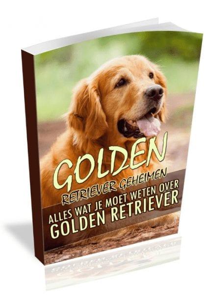Golden Retriever handboek review
