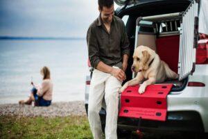 Wat is de beste auto bench voor honden? Bekijk de Top 5