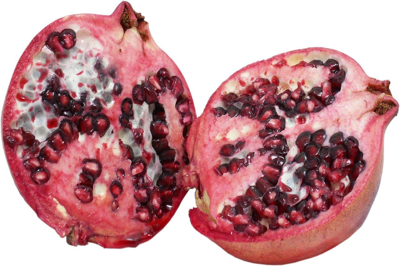 Pitten in appels of peren zijn giftig voor honden
