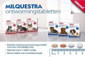 Beste puppy ontwormingsmiddel – De Beste Top 3