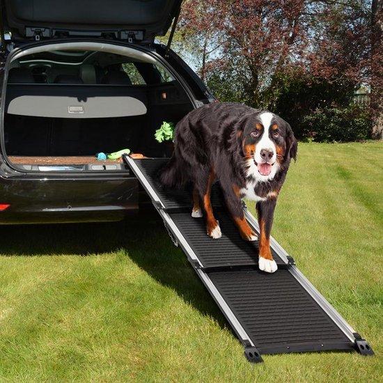 Beste Loopplank voor honden - Een top 4!