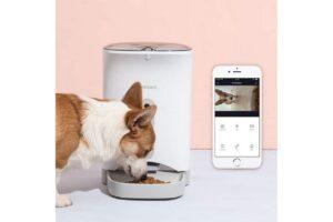 Automatische voerbak voor kat/hond? Check hier de top 3!