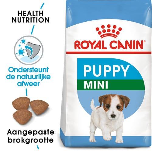 Welke voeding voor een Jack Russel pup?