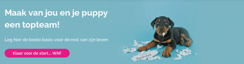 Puppypower cursus van Maanen LOCA - Spelenderwijs je pup opvoeden!