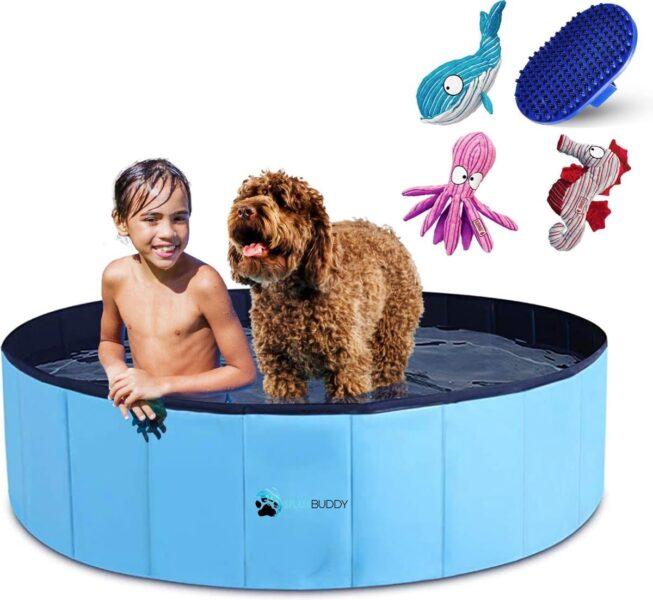 Beste hondenzwembad top 3